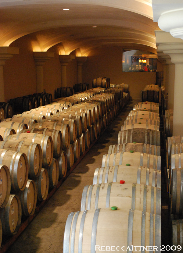 Wine barrels at ferrari carrano